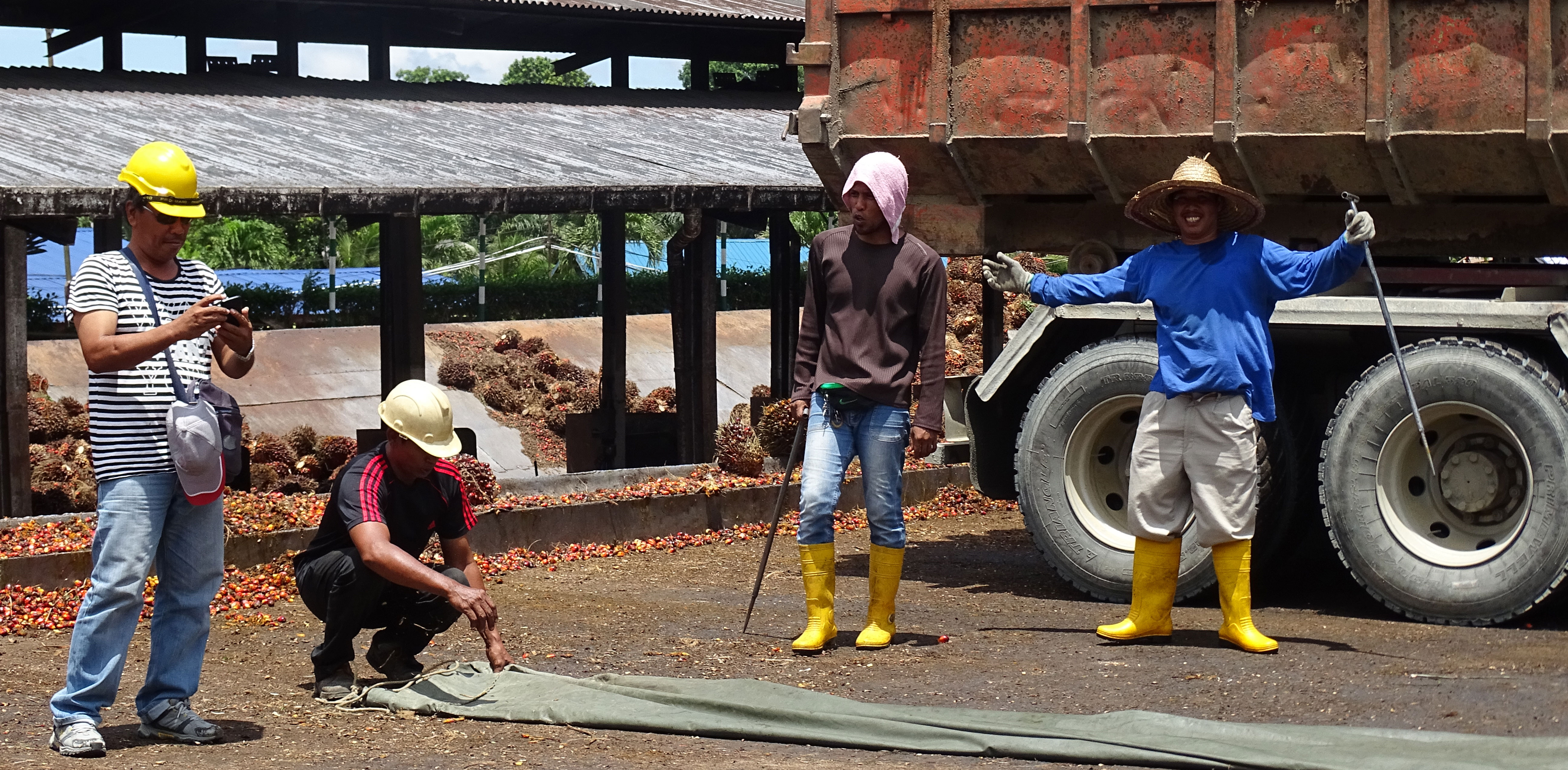 Men working at the palm oil factory