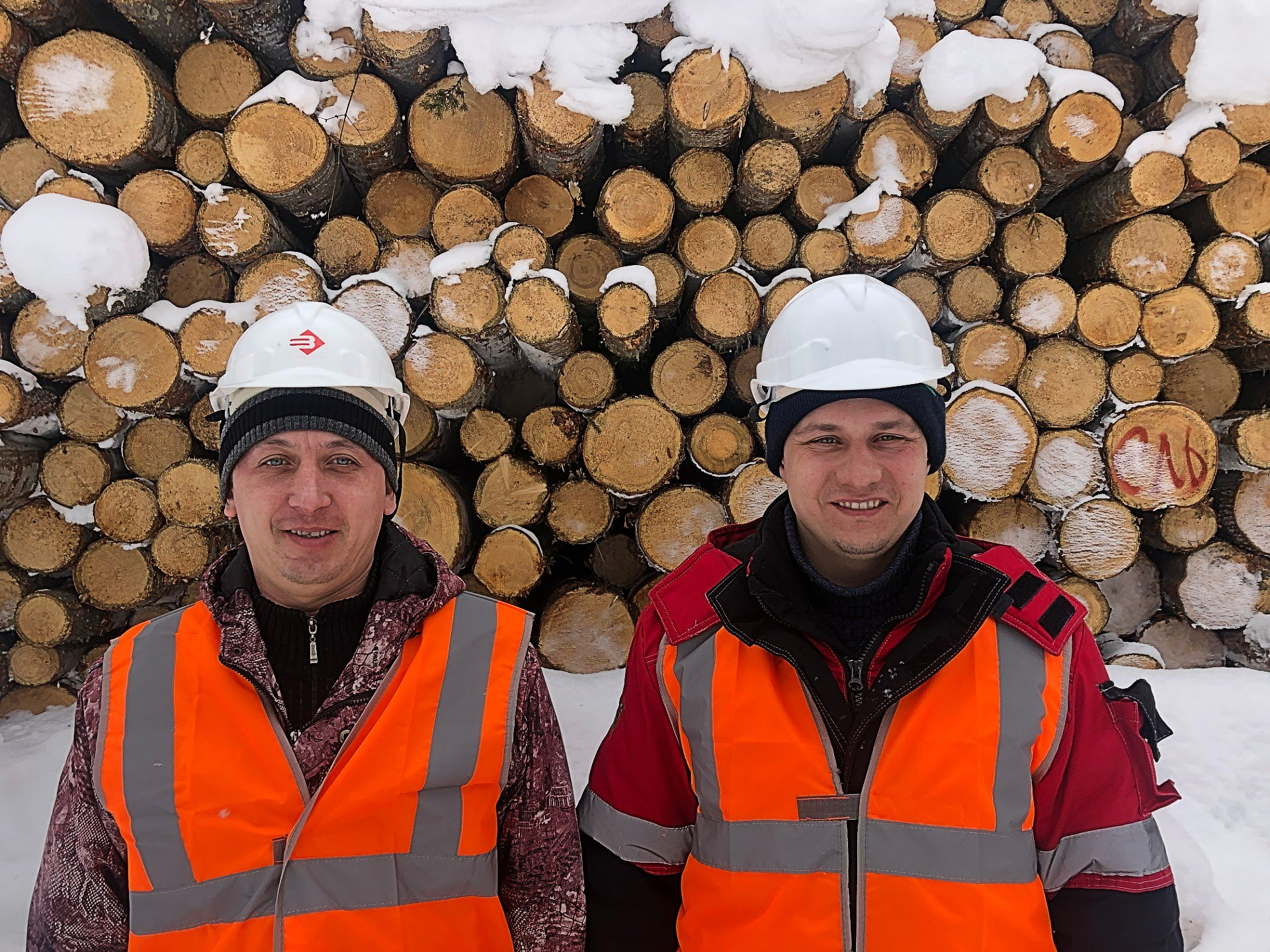 Foresters at work on central Siberia. Photo: Benjamin Holst