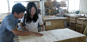 Wood industry facility in China.jpg