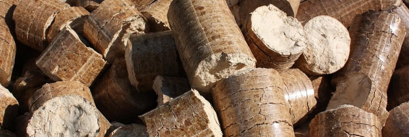Latvian sawmill company SBP certified to meet demands for