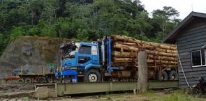 Sourcing Controlled Wood