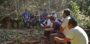 Community Forestry Operation