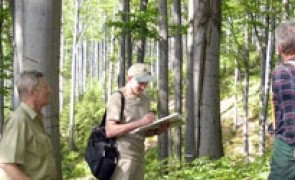 Group Certification of Forest Owners in Estonia, Latvia and Lithuania