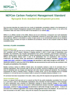 Synopsis from CFM Standard development process