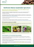 Rainforest Alliance Sustainable Agriculture