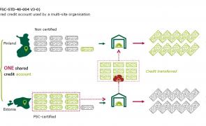 Diagram of multisite credit system