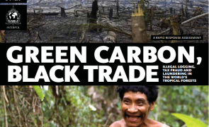 Green carbon black trade report cover