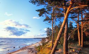 FSC Chain of Custody Expert Course in Jurmala