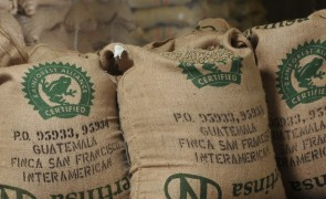 Rainforest Alliance: Still room for 'small adjustments' in new certification system