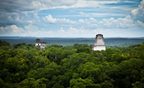 The magnificent Maya Biosphere Reserve